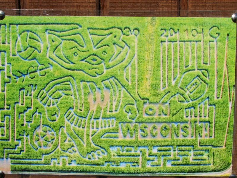 The Corn Maze!